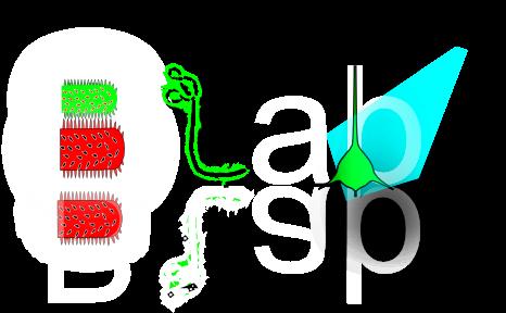 BEIER Lab